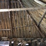 Image of underside of thatched roof