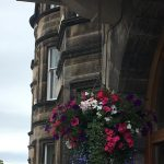 Hanging Planter on Building in Inverness