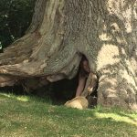 Jo Hiding in Faerie Tree