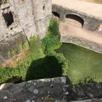 Moat with Water Lilies