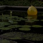 Water Lilies, Bobbing Glass Sculptures and Blooms